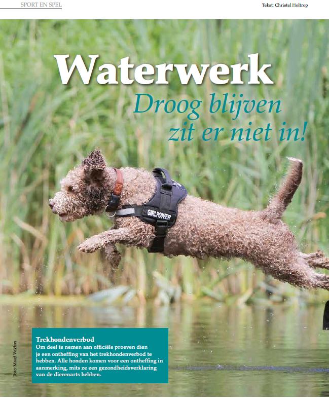"""Waterwerk in """"Onze Hond"""""""