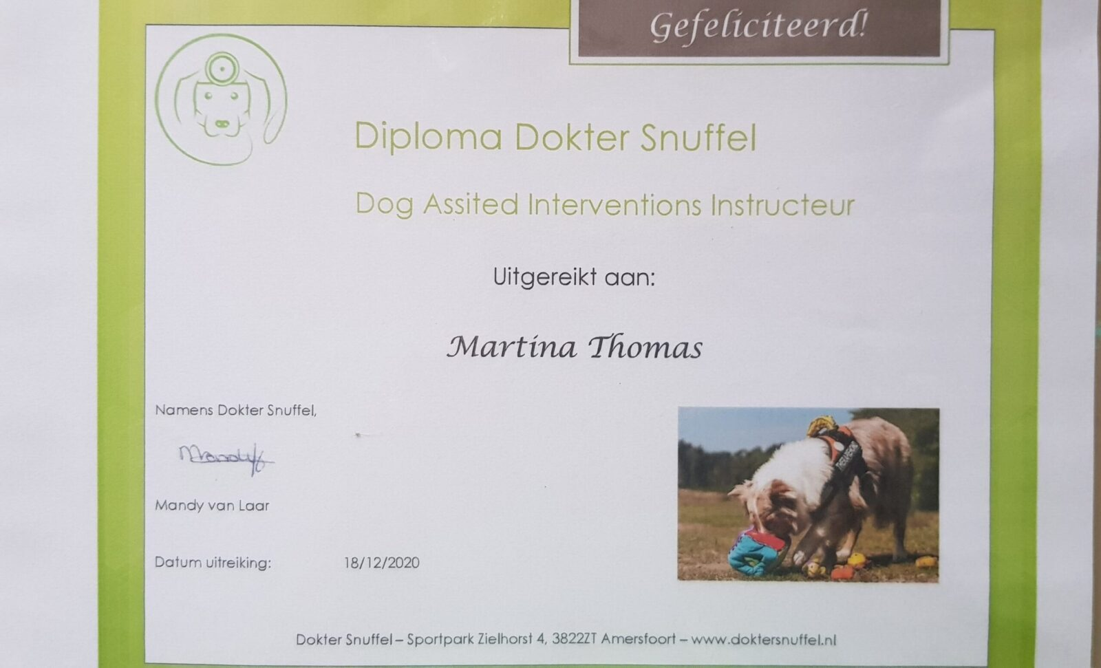 Diploma Instructeur DAI behaald